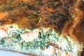 tarte aux epinards et saumon frais
